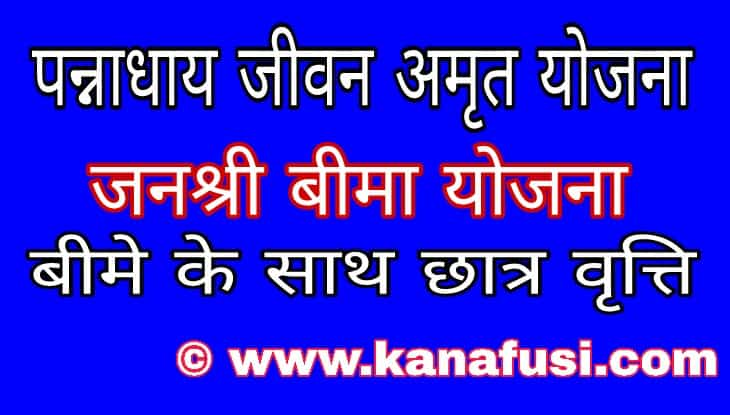 Pannadhay Jivan Amrit Yojana form Kaise Jma kare