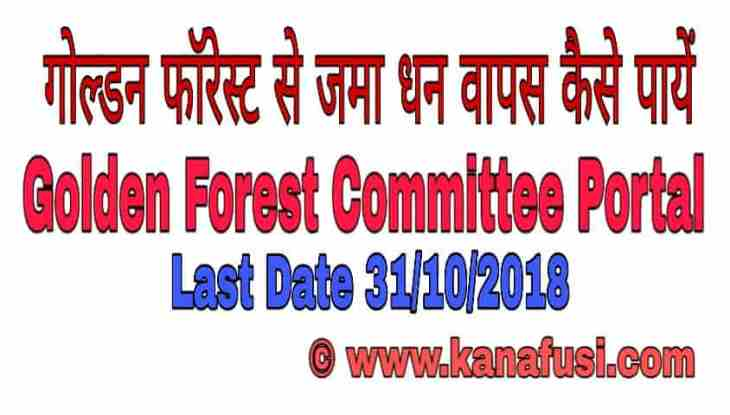 Golden Forest Committee Portal | Golden Forest India Limited Latest News In Hindi