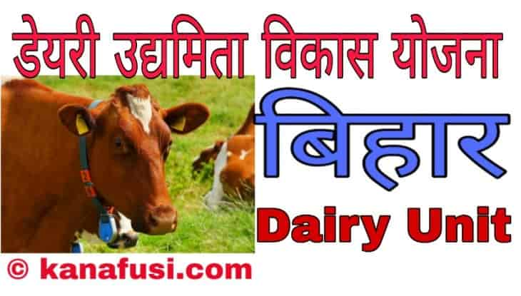 Dairy Udyamita Vikas Yojana Bihar Me Apply Kaise Kare In Hindi