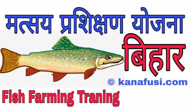 Machli Palan Training Bihar Me Kaise Le in Hindi