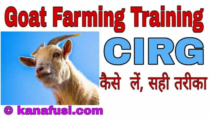 Goat Farming Training Kaise Kare in Hindi