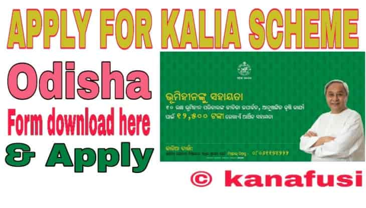 Kalia Scheme Odisha Download Your Form And Apply All Details in Hindi