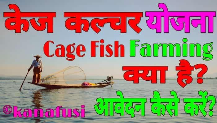 Cage Fish Farming Yojana के तहत पिंजरा पद्धति से मछली पालन किया जाता है। उत्तर प्रदेश में Cage Culture से मछली पालन की शुरूआत बुंदेलखंड रीजन से हो रही है। यहां के बांदा, महोबा, झांसी, ललितपुर जिलों में मौजूद बांधों में विदेशों की तर्ज पर मछली पालन किया जा रहा है।